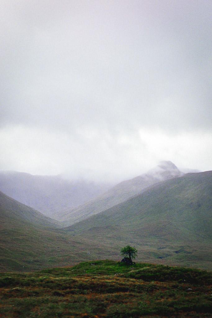 scotlandireland (11 of 70)
